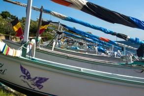 Amed fishing boats