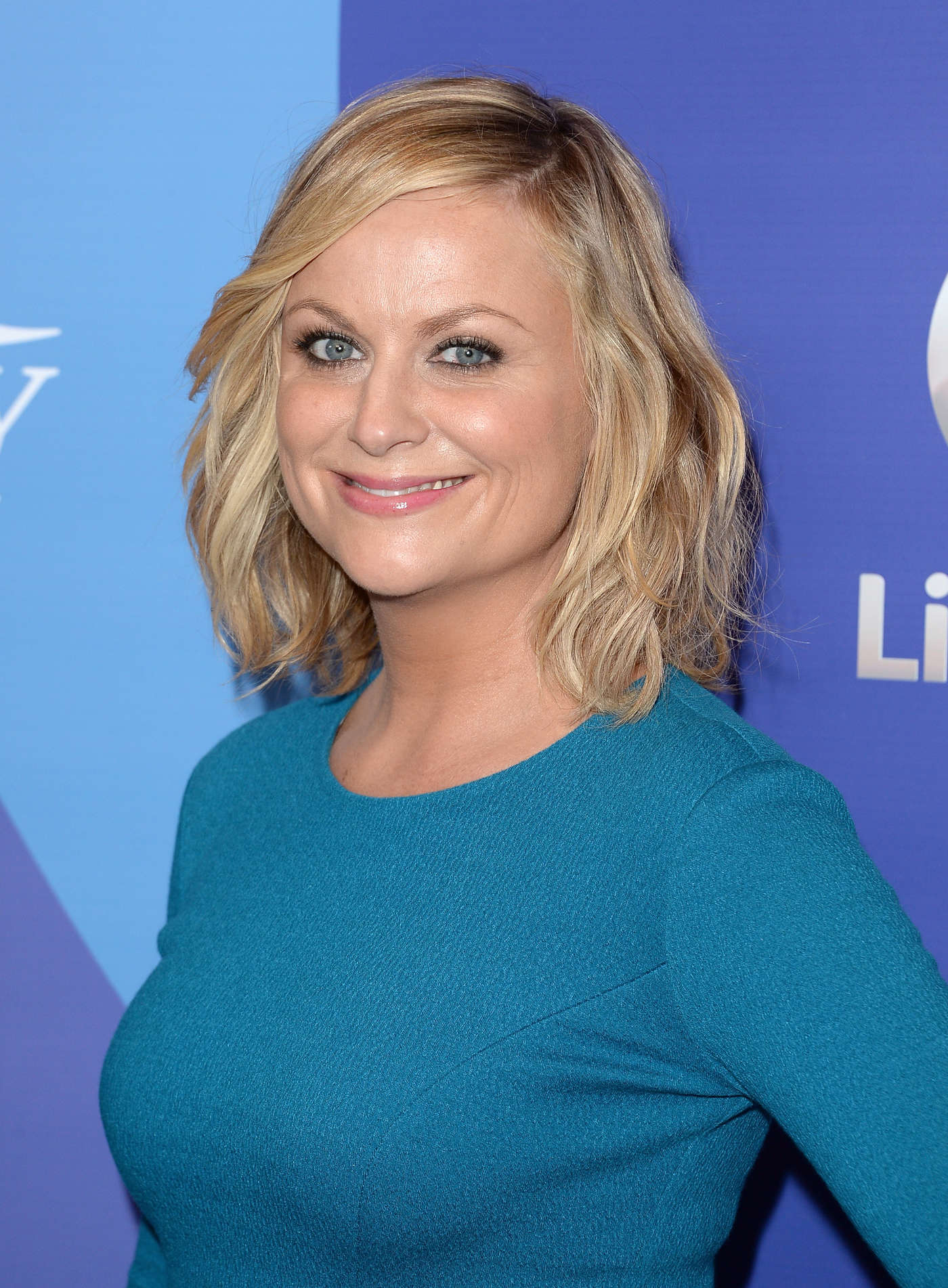 amy poehler joins will ferrell for two