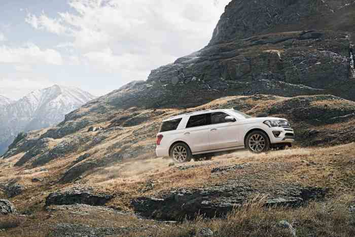 2018 ford expedition mountains