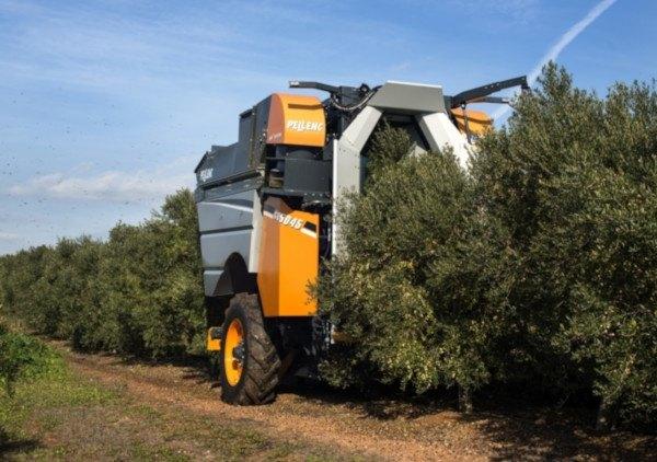 Maquinaria para olivar superintensivo. Cosechadora. Fuente:innovagri