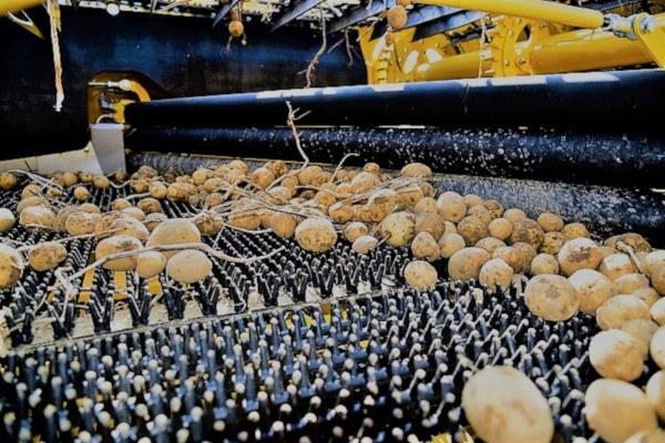 Cosechadoras de patata – Máquinas agrarias integrales