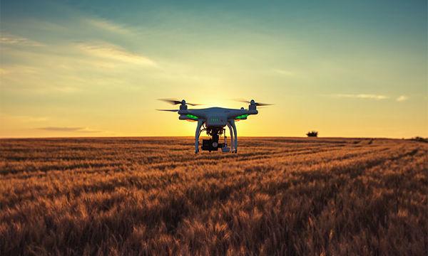Dron en finca agrícola