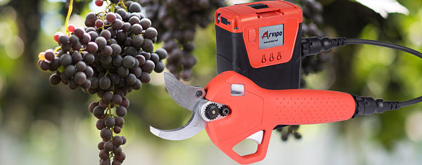 Tijera Arvipo Ecoprunning 50