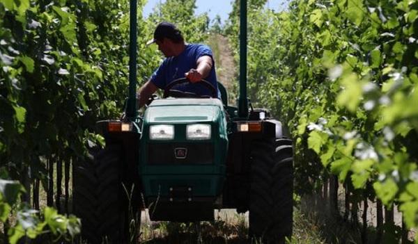 Tractor articulado Arbos S3050