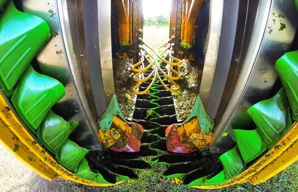 Cestillas para recoger los racimos (color verde)