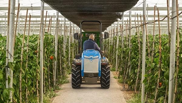 Tractor BCS entre calles de un invernadero