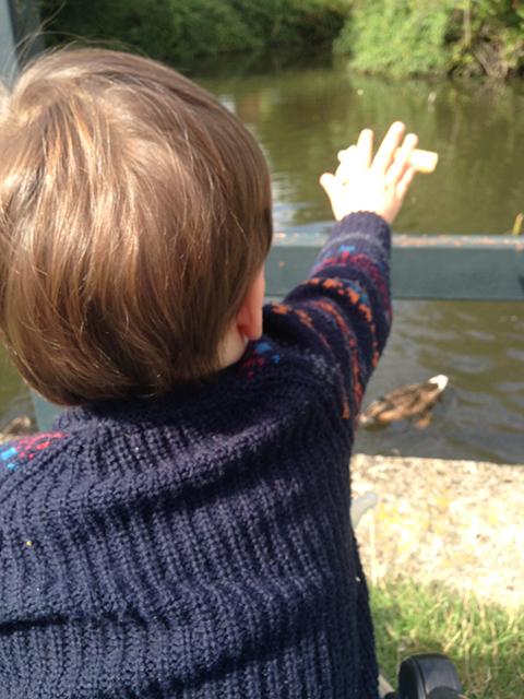Feeding Some Duckies