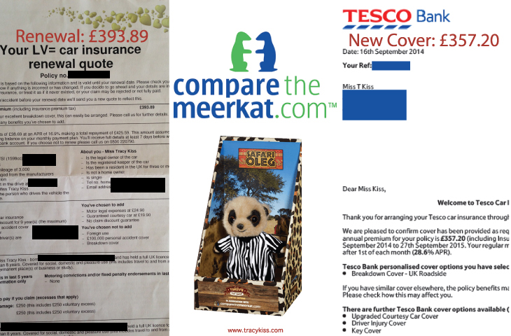 Car insurance quotes compare the meerkat