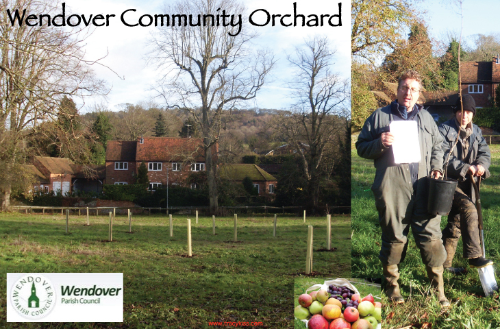 The Wendover Community Orchard