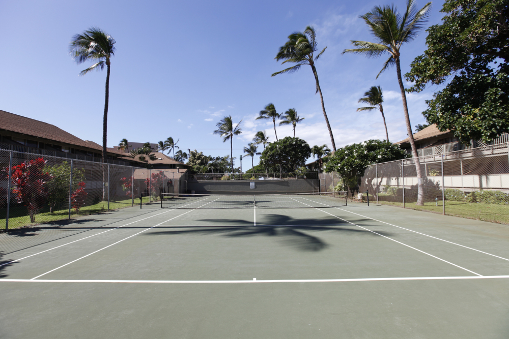 56 tennis 2