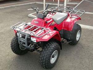 KAWASAKI KLF 250, BAYOU 250, WORKHORSE 250 ATV SERVICE