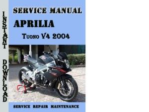 Aprilia Tuono V4 2004 Service Repair Manual  Download Manuals