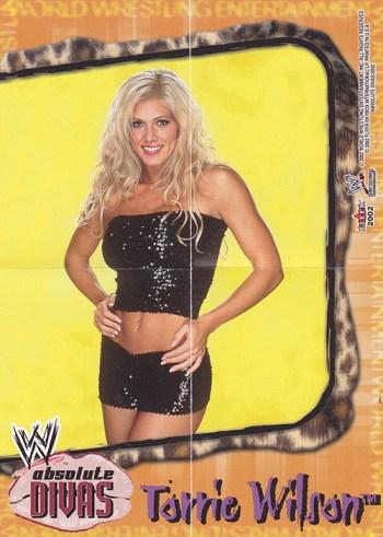 2002 Fleer WWE Absolute Divas Mini Poster