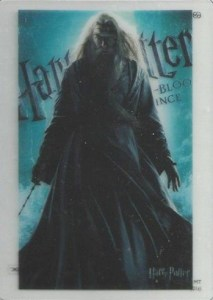 2010 Harry Potter Heroes and Villains Clear Acetate