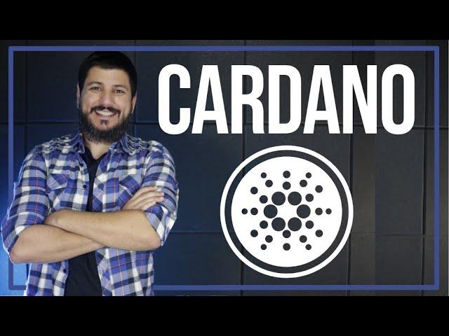 CARDANO ESTÁ GANHANDO ESPAÇO