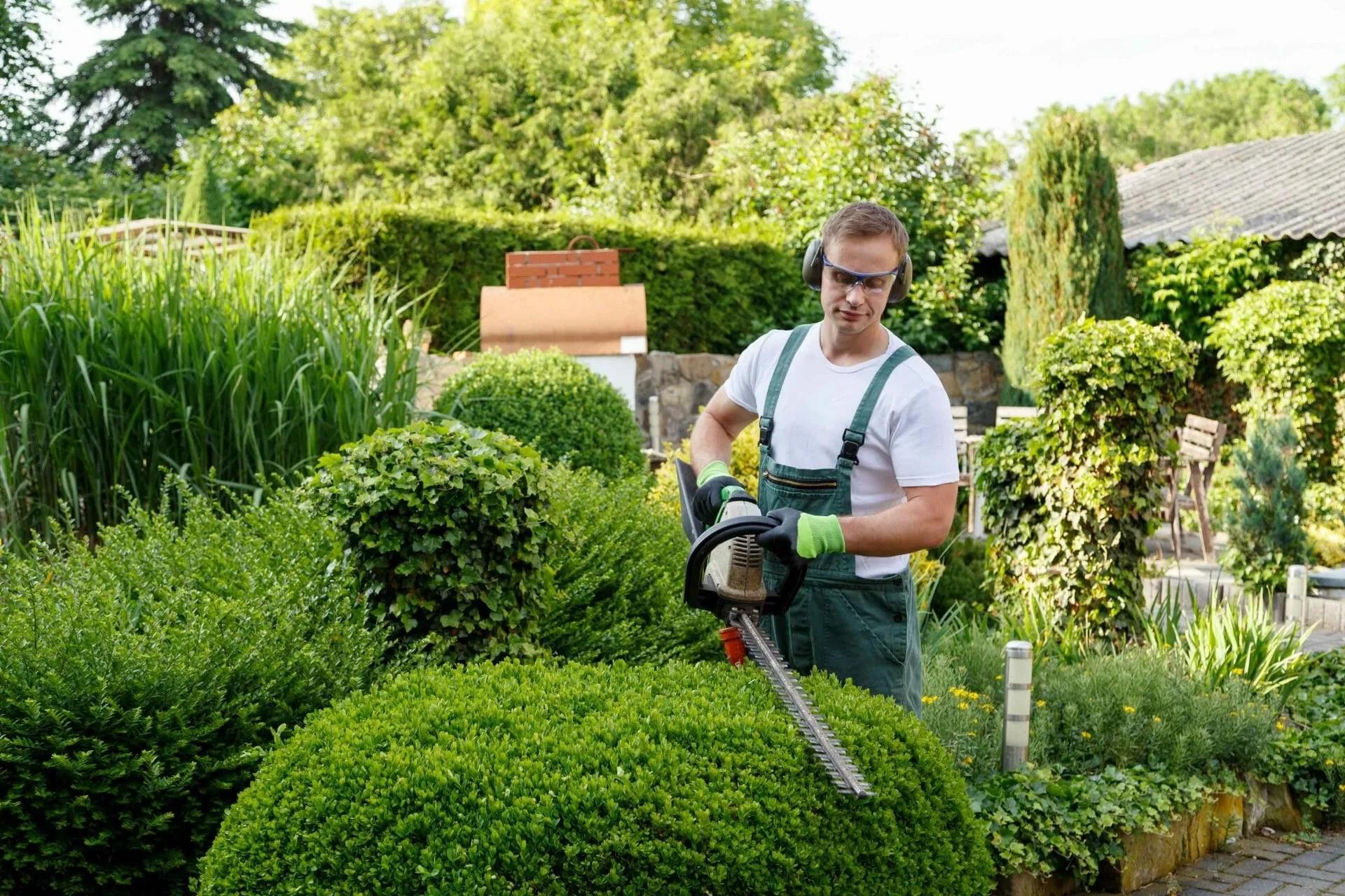 Landscape Gardener S Insurance Explained