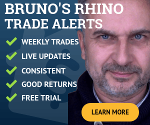 Professional Options Alert Service Rhino by Capital Discussions