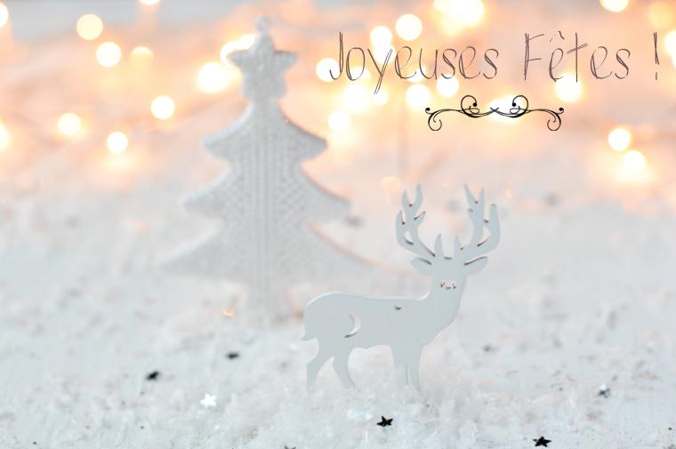 Joyeuses fêtes de fin d'année !!!