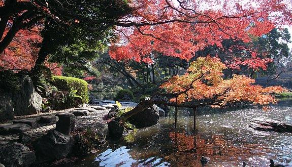 Immagine tratta da japan-guide.com