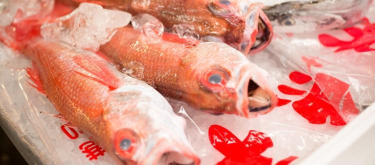 Japan food culture il cibo giapponese a roma tradurre for Oggettistica giapponese milano