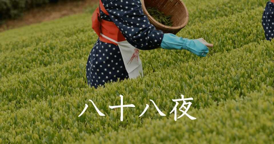 hachiyu hachiya, 88 notti dall'inizio della primavera