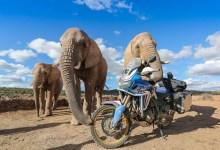 Photo of Honda Adventure Roads en Afrique du Sud !