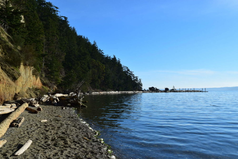 Camano Island Beach Walk