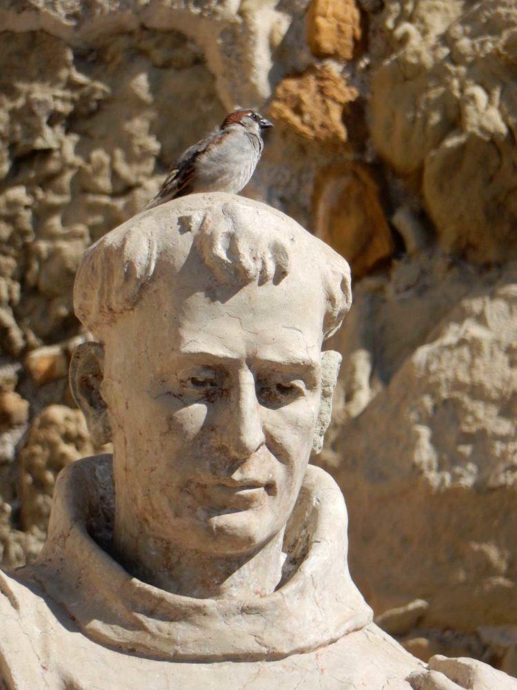 Father Serra & a Sparrow