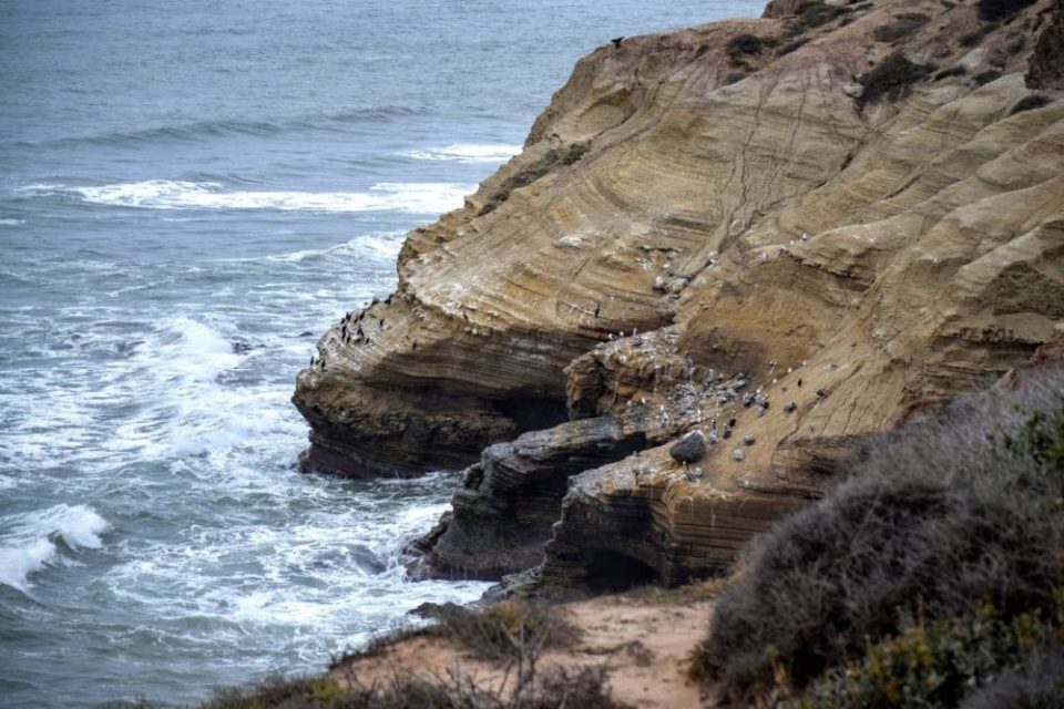 Cliffs of Loma Point