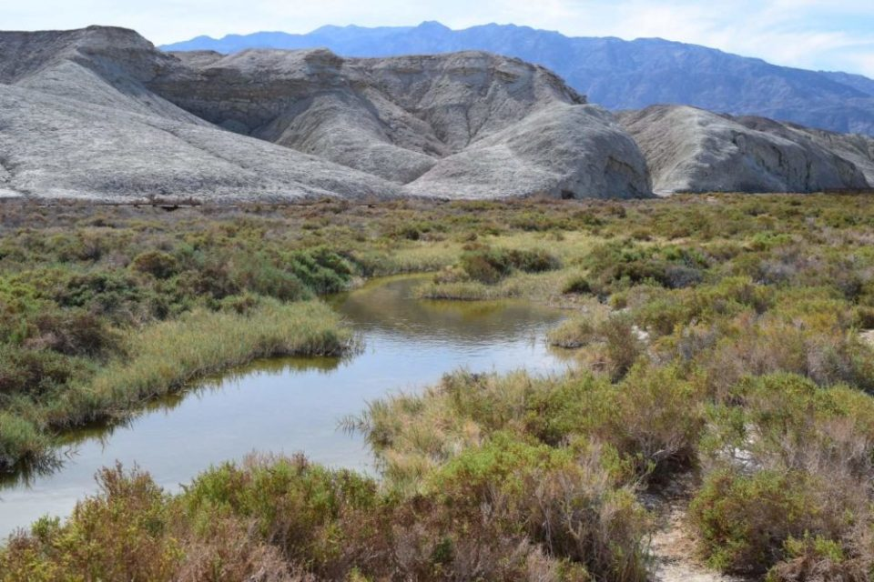 Spring-fed Salt Creek Pools