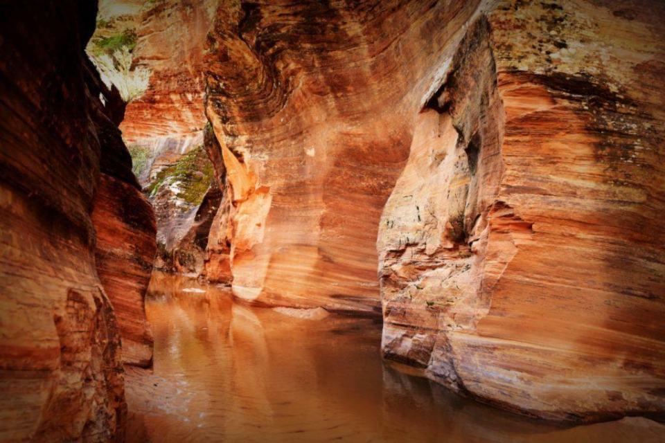 Slot Canyon near Pine Creek