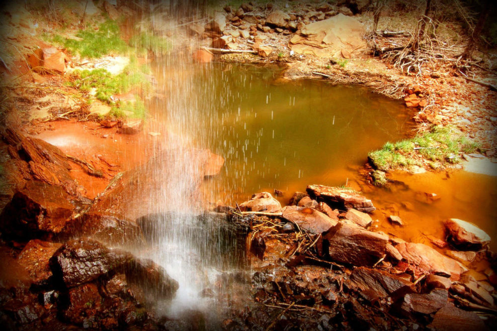 Yellowstone National Park Rv Parks >> Zion National Park: Emerald Pools & Kayenta Trail - The Adventures of Trail & Hitch