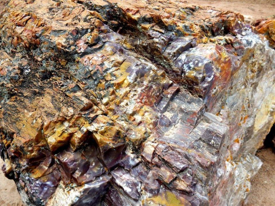 Petrified Wood Log. cobalt makes a green, blue. iron oxides make red, brown, and yellow.