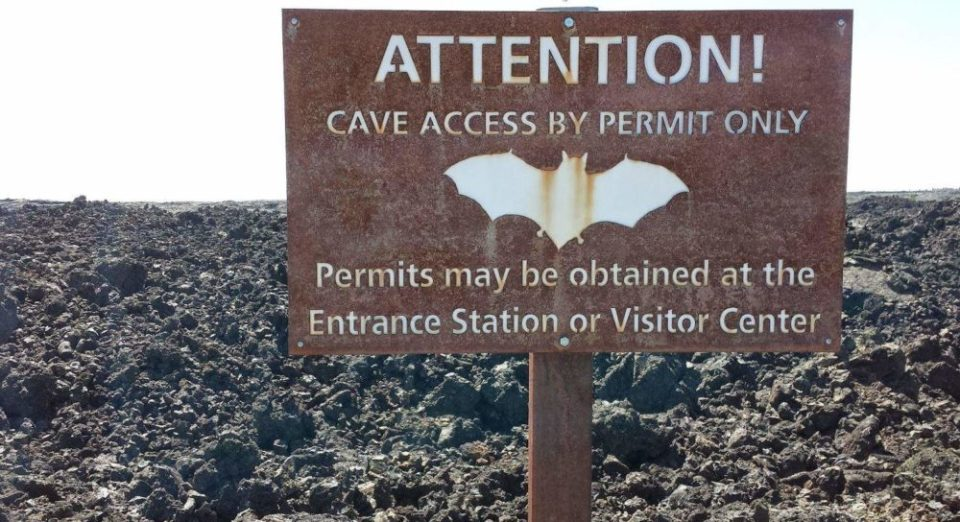 Prevent the needless death of our beloved bats. Get a permit at the Visitors Center.