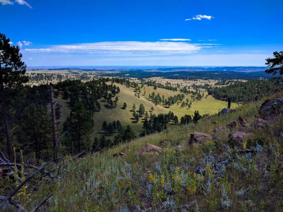 Amazing view of From Rankin Ridge Trail