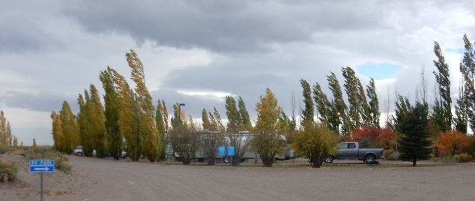 Here we are on a windy day at the park. The trees in the park help keep it from being dusty.