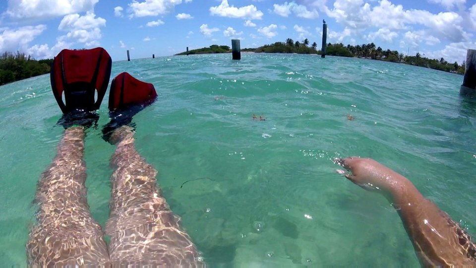 Boca Chita Key & Snorkel Site.