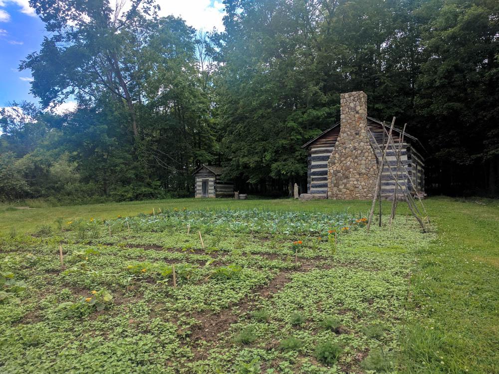 Log Cabin & Garden
