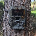1stCampro Trail and Game Camera Bungee Cord