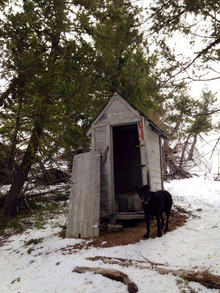 Coming straight up the mountain I ran into the outhouse behind the lookout. Jake was curious
