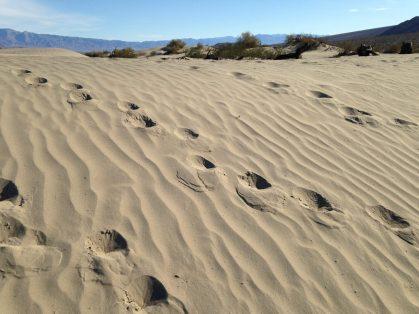 Fun at the Mesquite Sand Dunes