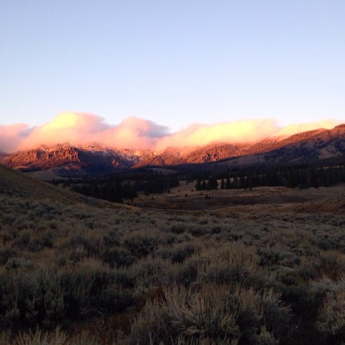 Oh Montana. I think I'm in love.