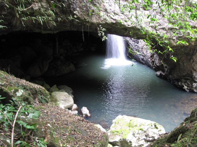 Springbrook National Park in the Numinbah Valley near the Queensland-New South Wales border