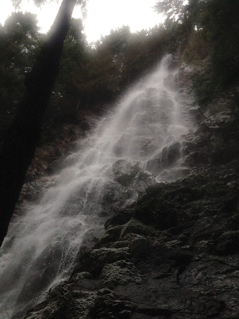 Looking up at the surprising Teneriffe Falls. Very cool!