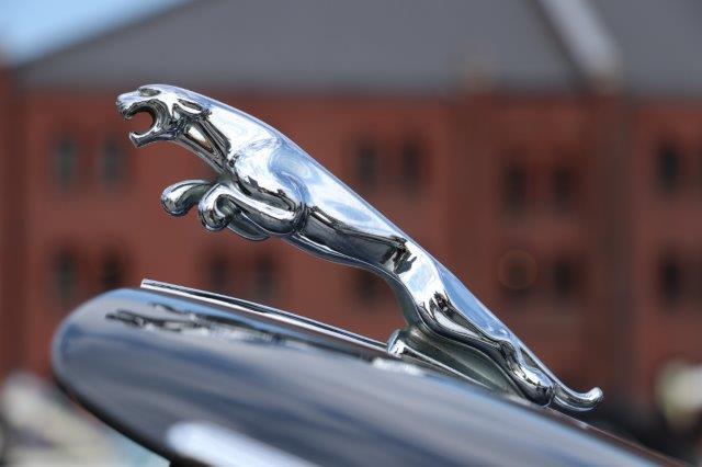 jaguar, E-type, MKII, XK120, XK150, ジャガー, 赤レンガ倉庫, 横浜, 横浜ヒストリックカーデイ, リーピングキャット,