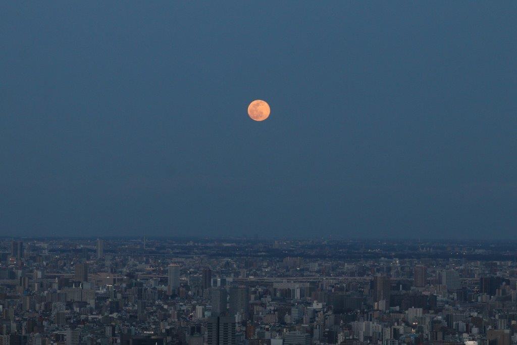スノームーン, イマソラ, サンシャイン60展望台, 池袋, フルムーン, 夜景, サンシャイン60, 東京夜景, 池袋夜景, 満月, 筑波山, 東京スカイツリー, 東京タワー, snow moon, imasora, sunshine60, sunshine60 observatory, night view, full moon, ikebukuro, tokyo, tokyo night view, ikebukuro night view, mt tsukuba, tokyo skytree, tokyo tower,