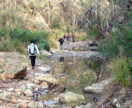 Pyrites-Creek