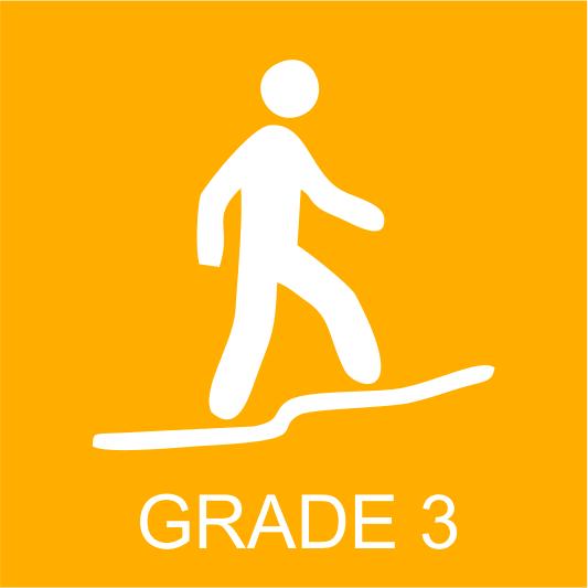AWT Grade 3