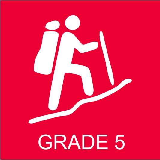 AWT Grade 5