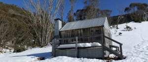 silver-brumby-hut